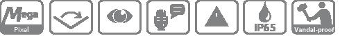 DH-VTO3211D-P2 IP вызывная панель Dahua